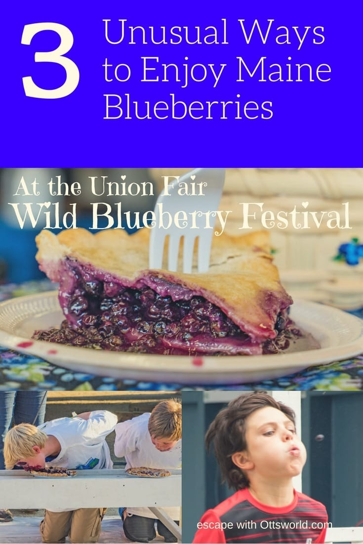 Unusual ways to celebrate the Maine Blueberry at the Union Fair Blueberry Festival.  Baking, spitting, and eating!