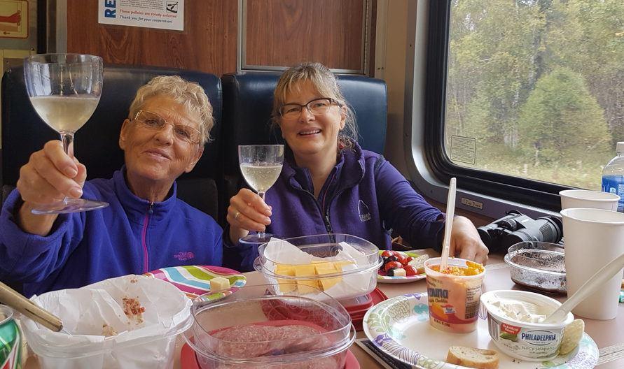 Alaskan Railroad Hurrican Turn Train Local Travel