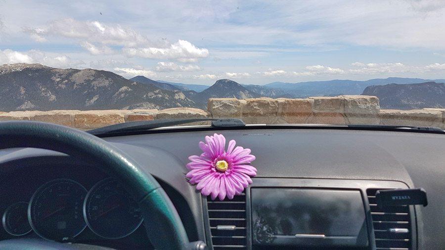 turo car rental and sharing
