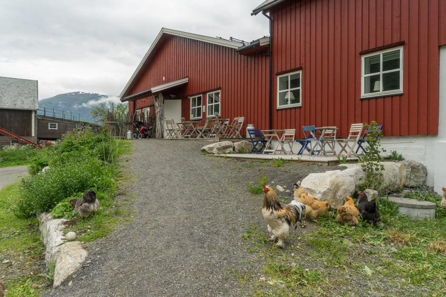 farm visit norway