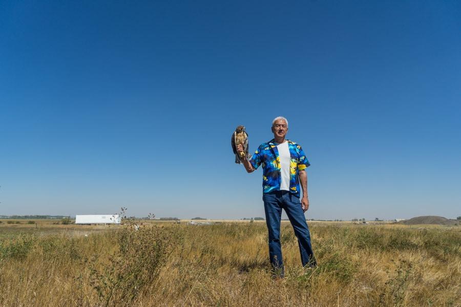 Alberta birds of prey hawk release