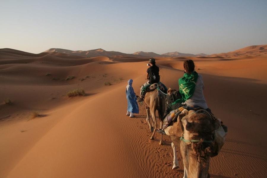 Sahara camel ride