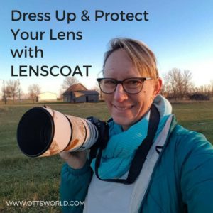 protect your lens in the alaska cold