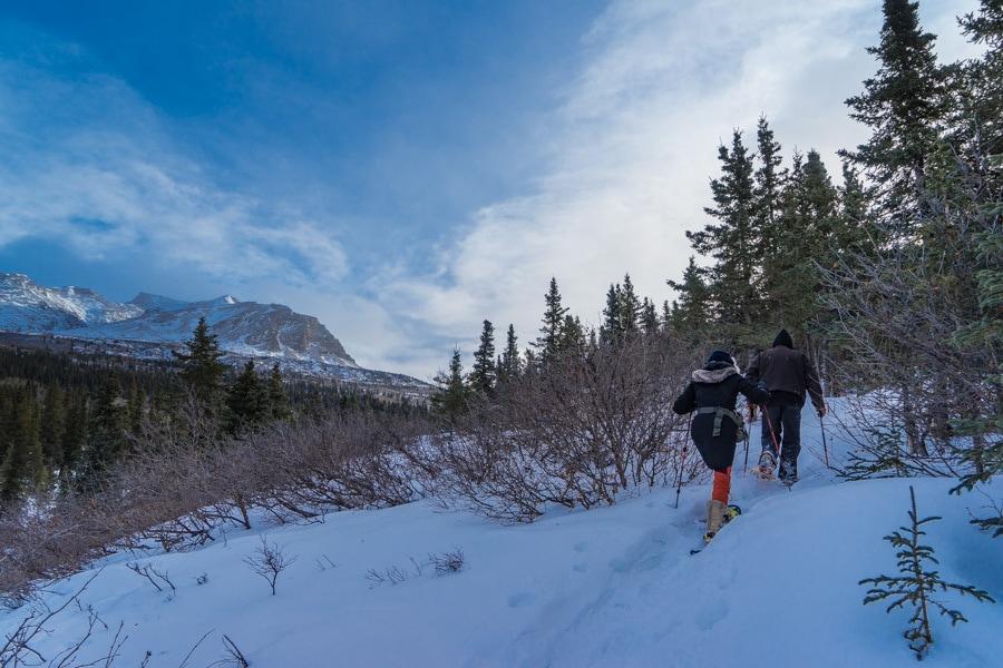 Fairbanks Alaska winter Black Rapids snow shoeing