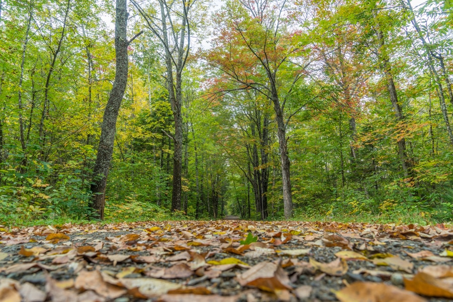 Maine huts and trails fall hiking