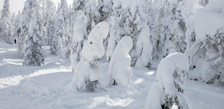 Quebec winter activities valley of phantoms