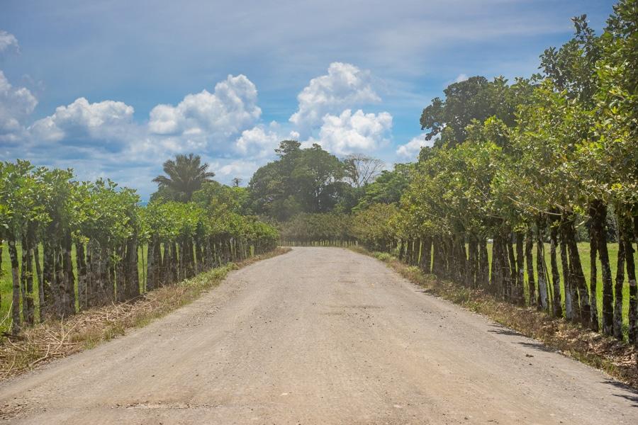 costa rica rural landscape