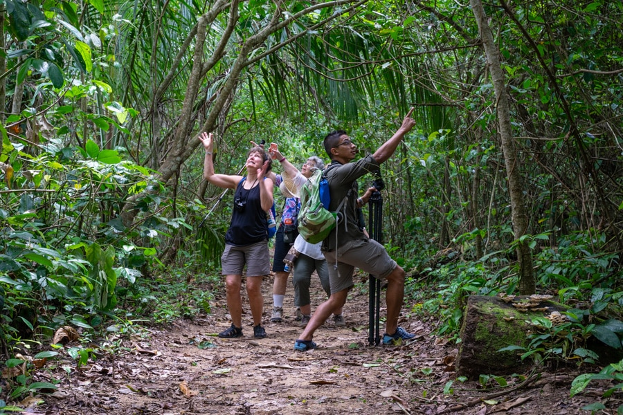costa rica small group tour