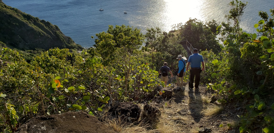 Hiking marys point