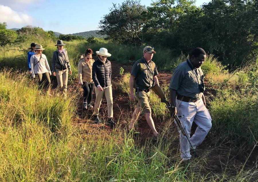 walking safari thanda reserve