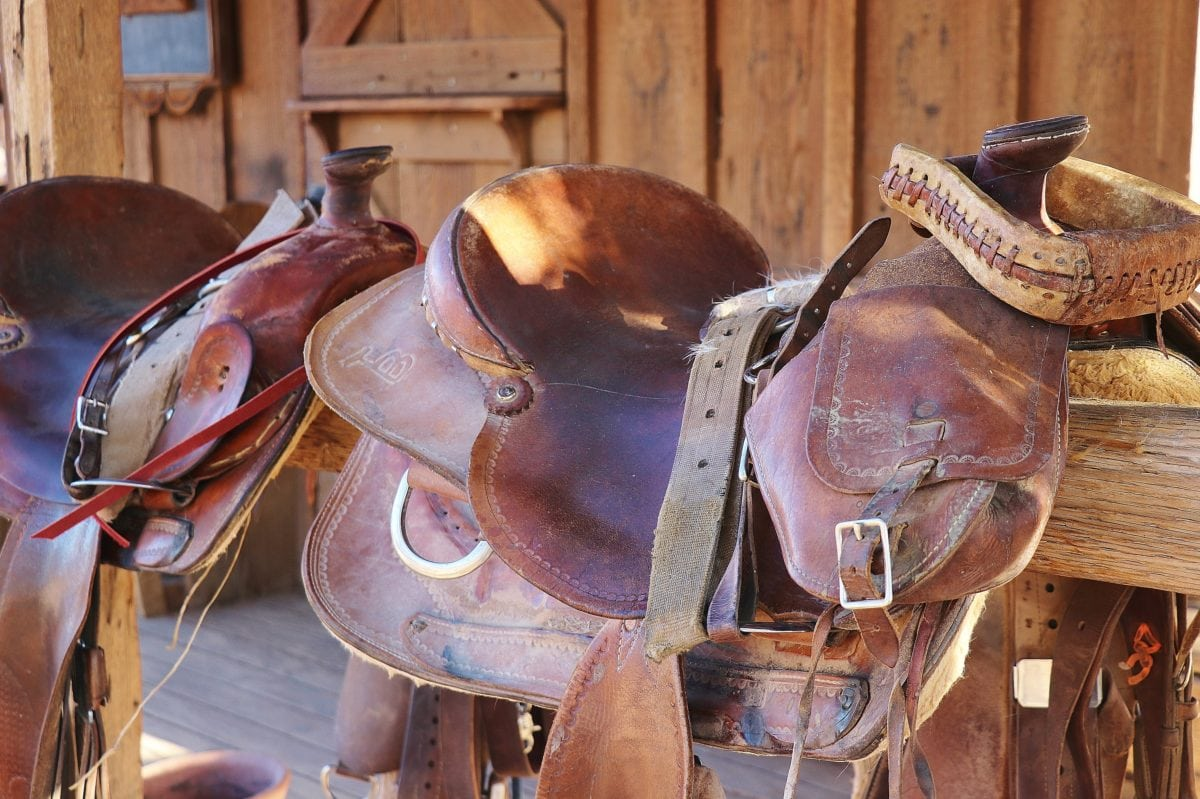 saddle  dude ranch