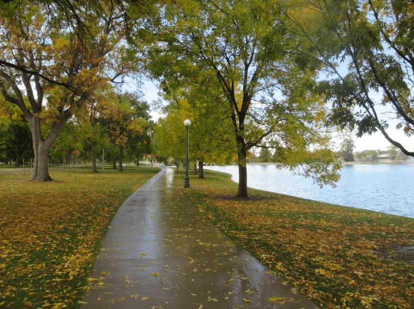 Denver City Park Trails