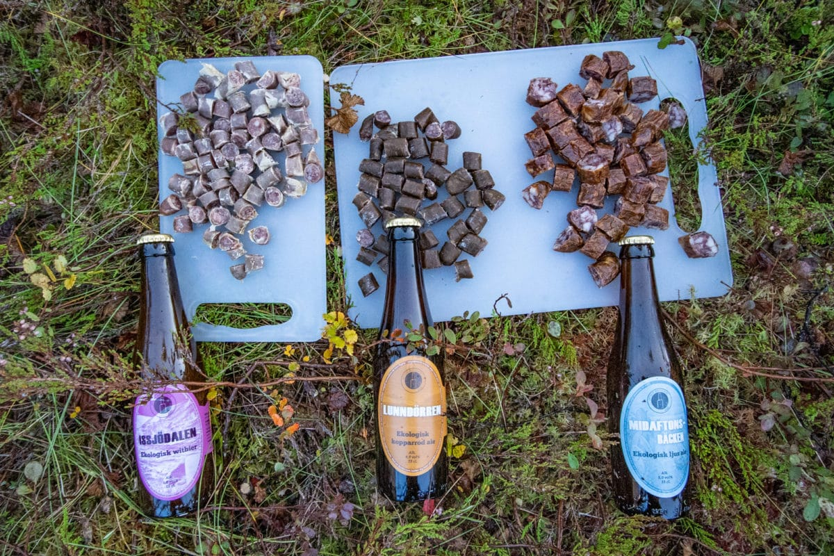 swedish craft beer