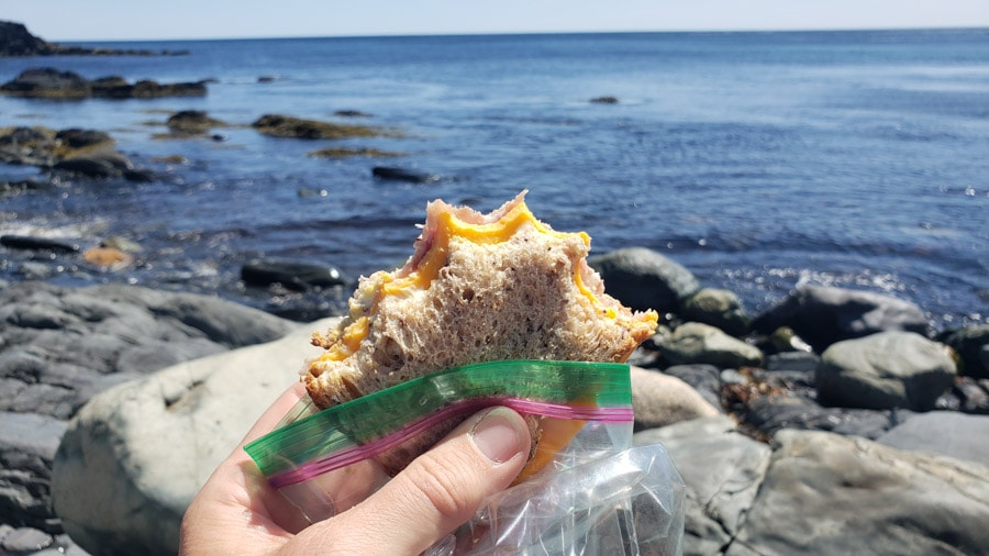 eating on the east coast trail