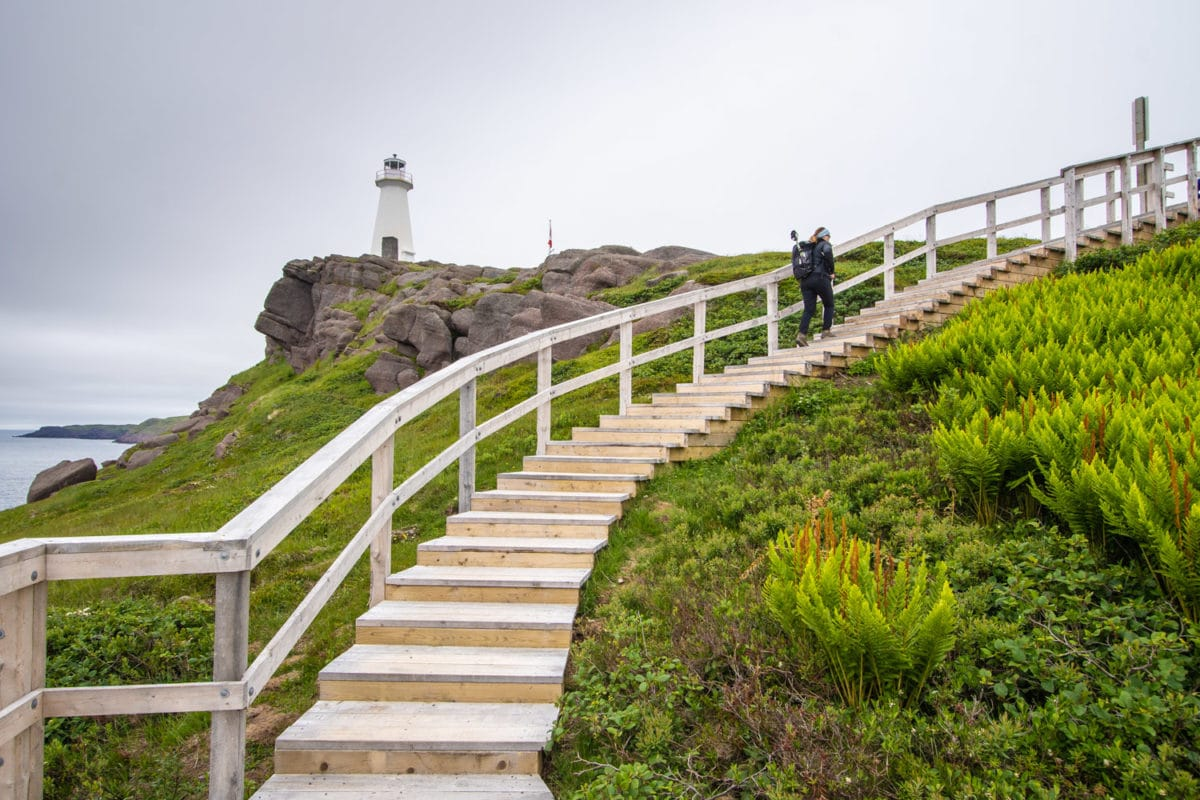 Cape Spear lighthouse and trail