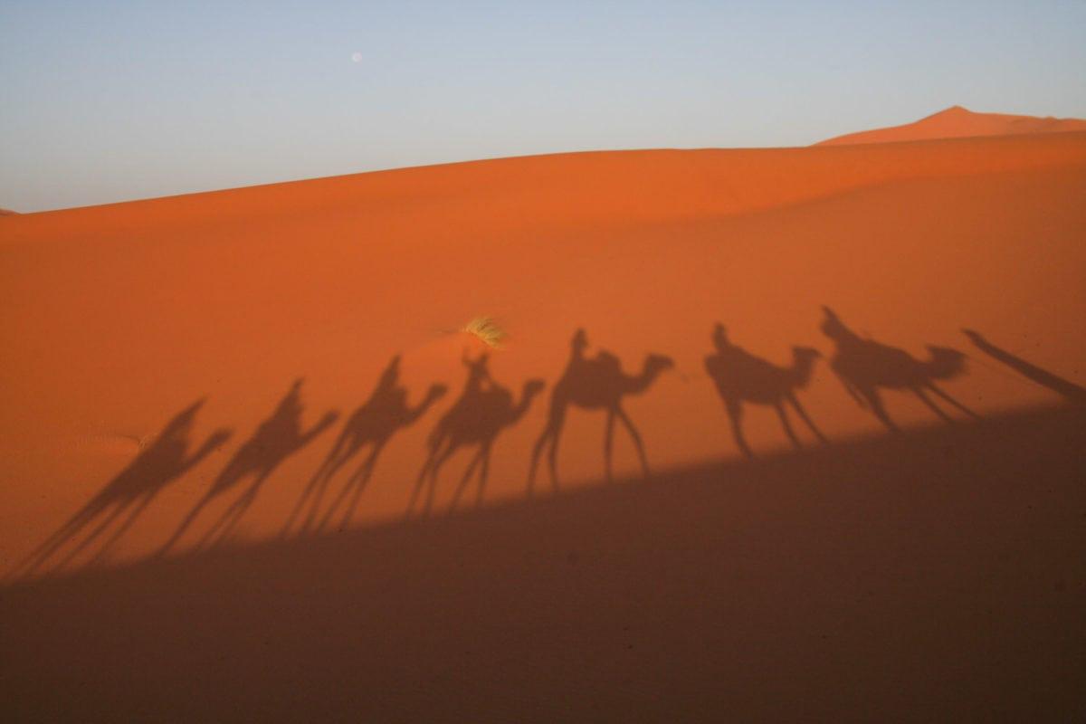 Erg Chigaga camel ride
