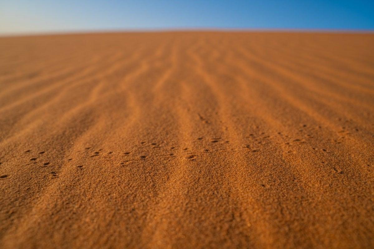 sahara desert sand