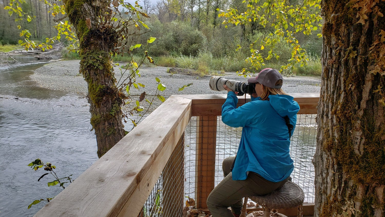 Photography from wildlife platform
