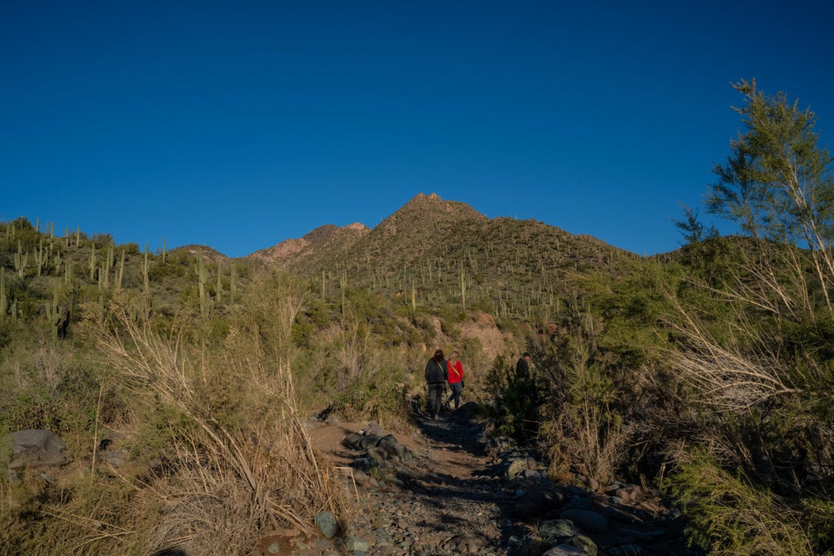 metate trail sonoran desert