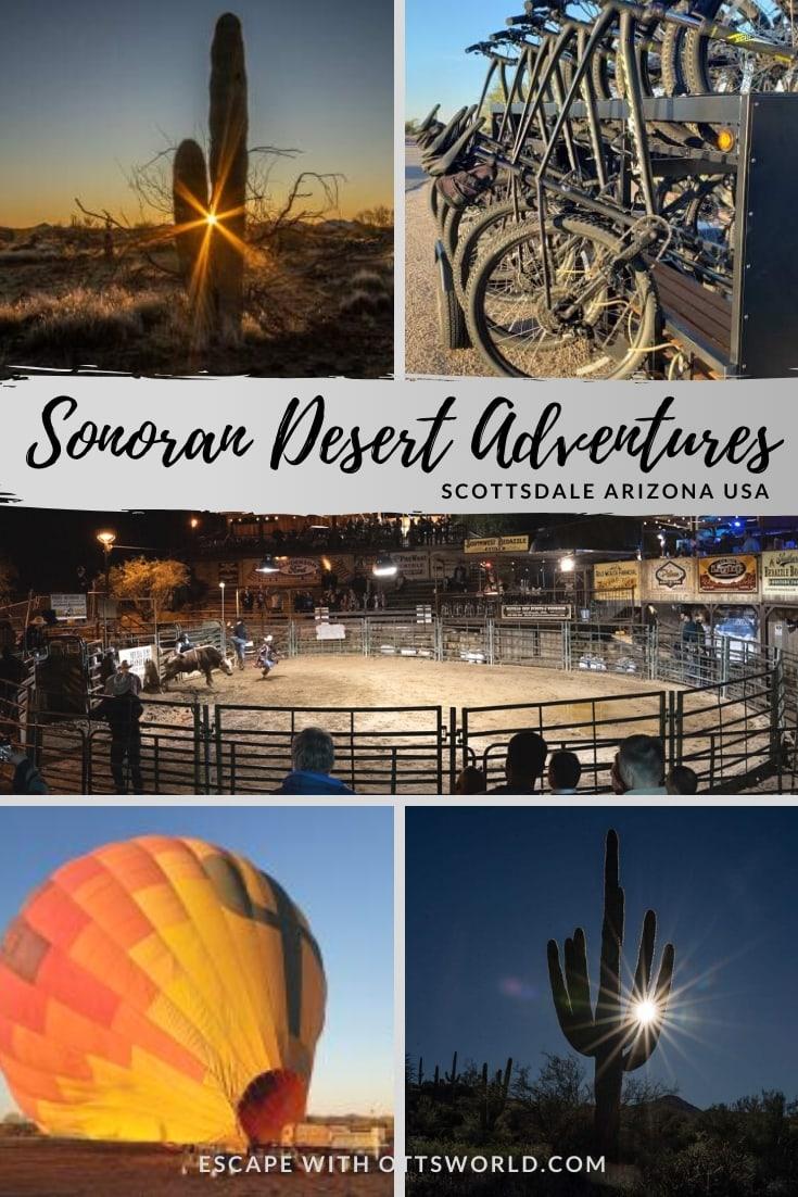 Sonoran Desert Scottsdale Arizona
