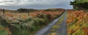 things to do in Connemara Ireland