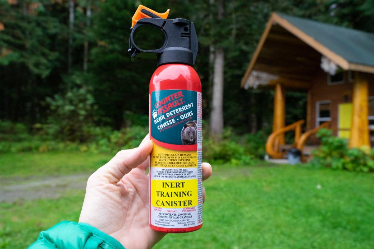 training bear spray