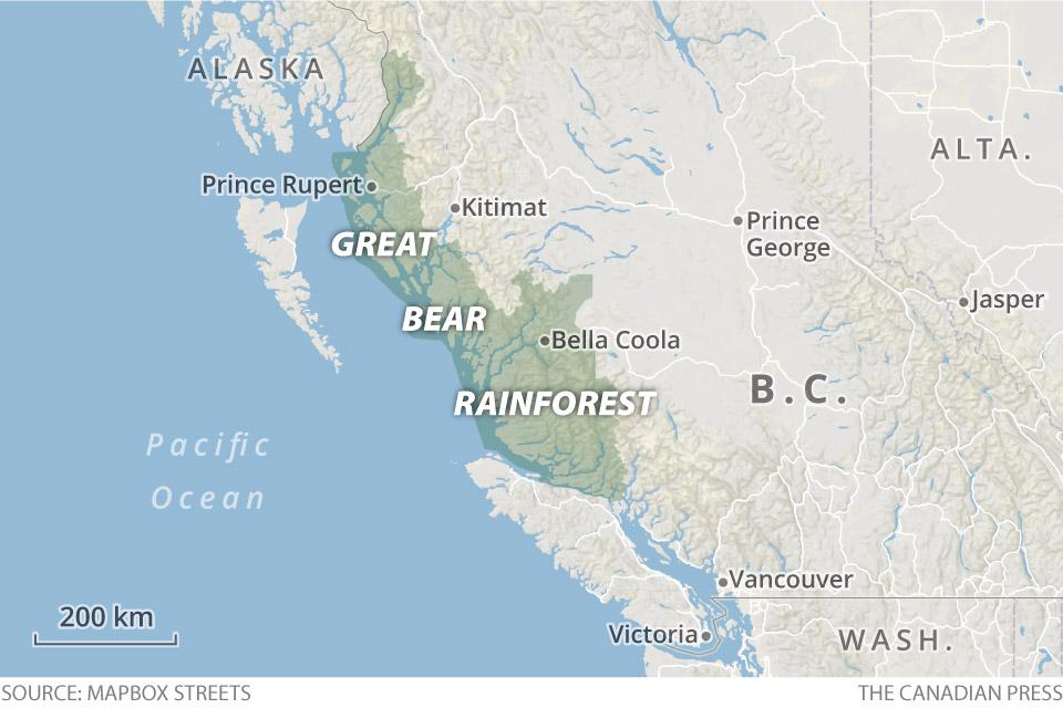Great bear rainforest map