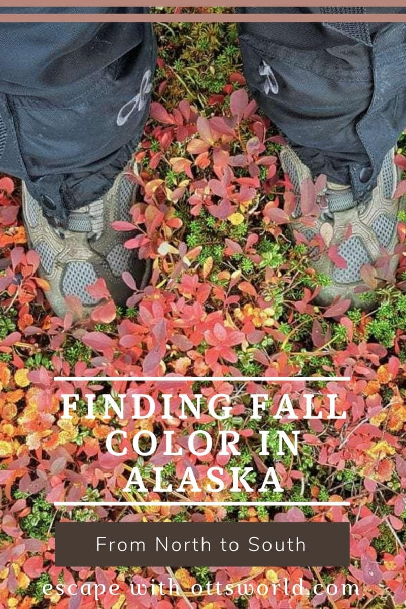 hiking boots fall foliage alaska