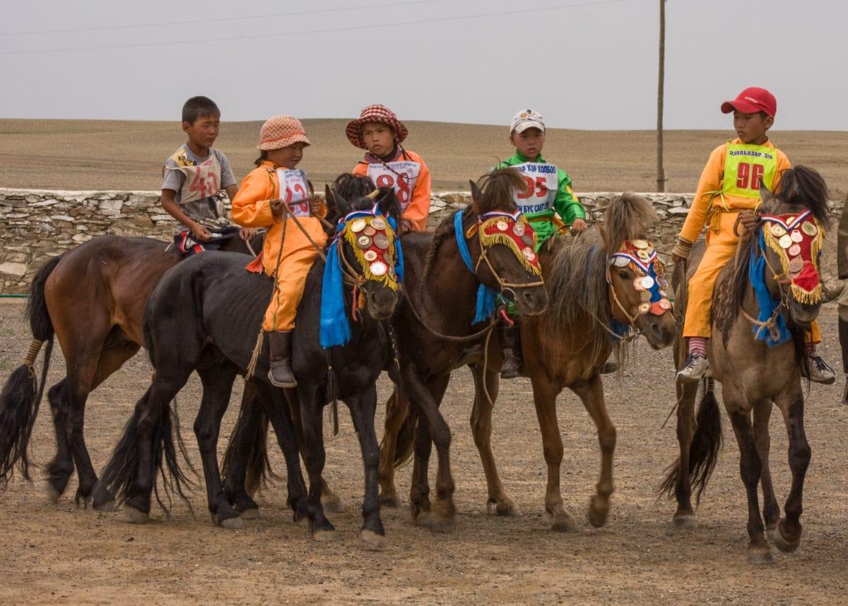 naadam horse races