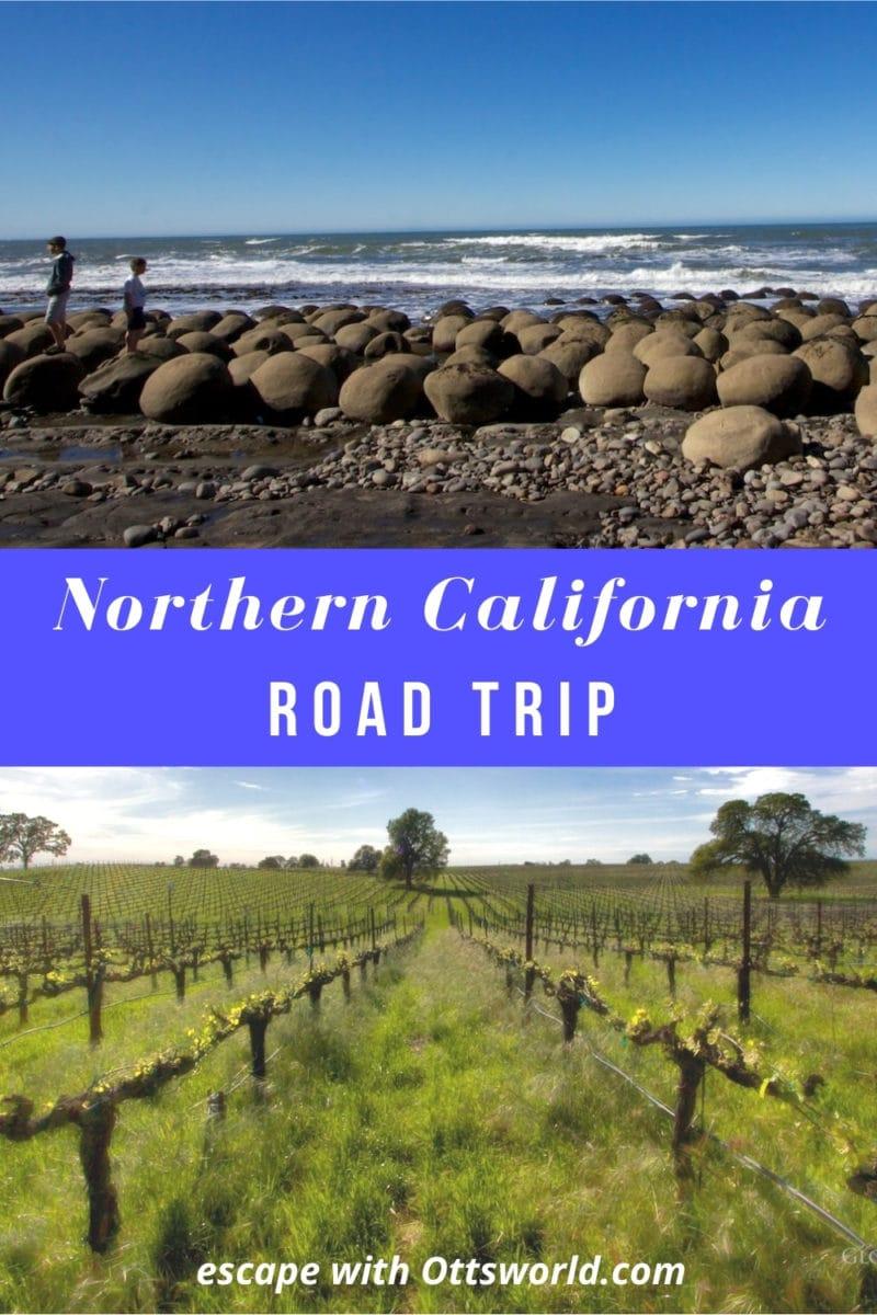 Rocky California coastline and vineyard