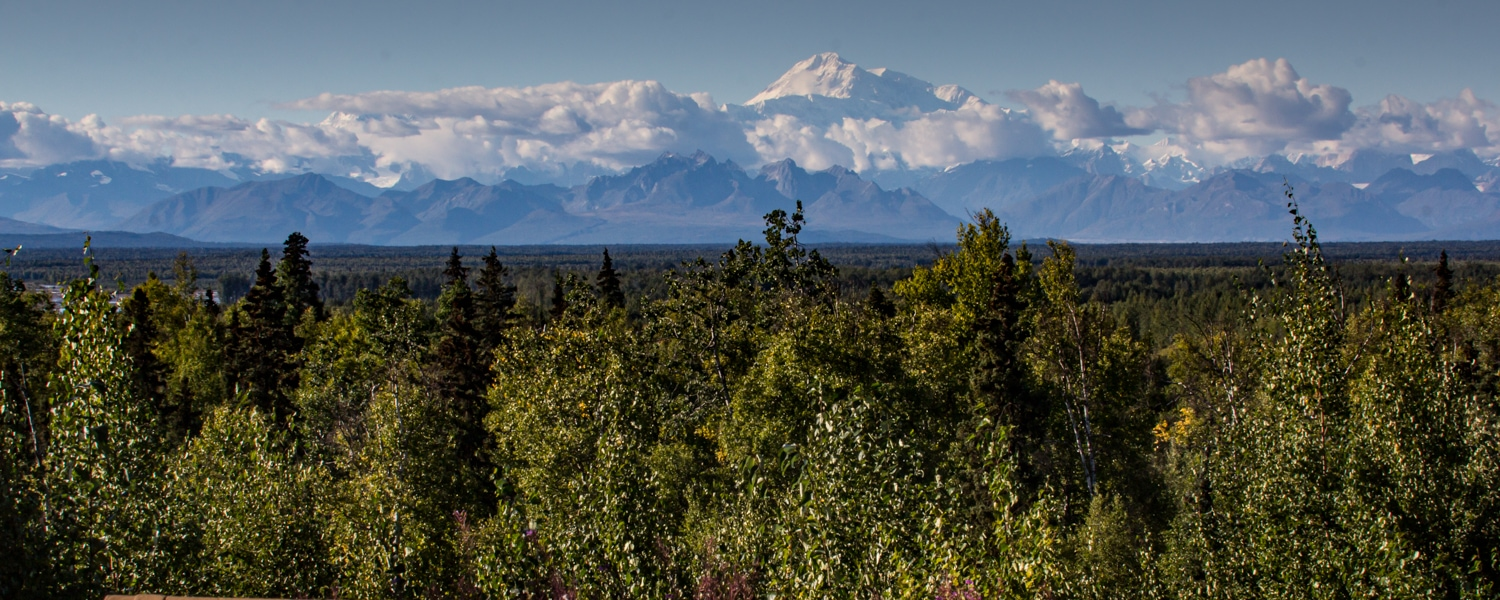 talkeetna things to do denali view