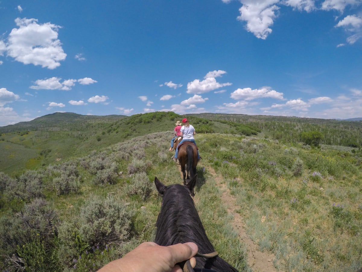 riding horse steamboat